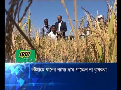 চট্টগ্রামে ধানের বাম্পার ফলন হলেও ন্যায্য মুল্য পাচ্ছে না কৃষকরা | ETV News