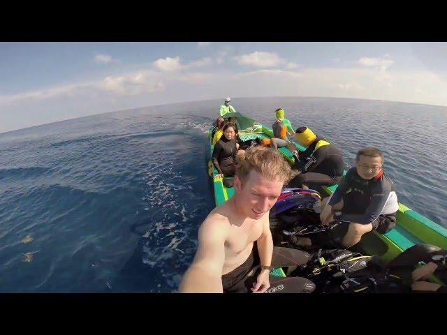 Diving Tubbataha Reef on Stella Maris - May 2016