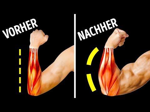 Unterarme dünne Hanteltraining Übungen