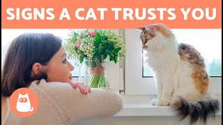 7 SIGNS that your CAT TRUST YOU😻