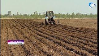 Аграрии Новгородской области получат грантовую поддержку в размере 160 млн рублей