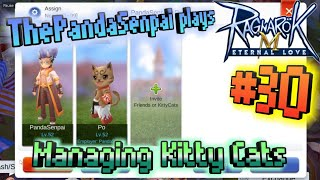 Ragnarok M Eternal Love - How to Manage your Kitty Cats / Server - Part 30
