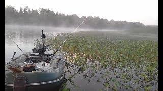 Отчеты о рыбалке на реке вишера в красновишерске