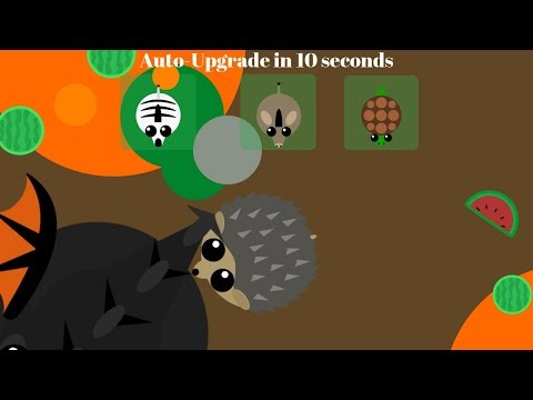 Hedgehog Trolls Black Dragon With Tailbite !! Hedgehog Trolling Part 3