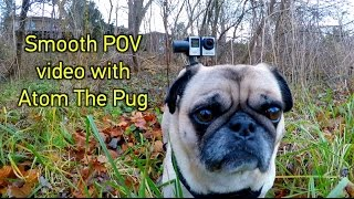 How To Get SMOOTH POV Video on a Dog! GoPro Tip #583 | MicBergsma