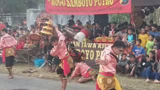 Rogo Samboyo Putro (tresno Waranggono, Kabut Putih) Sore Live Gayam Kediri