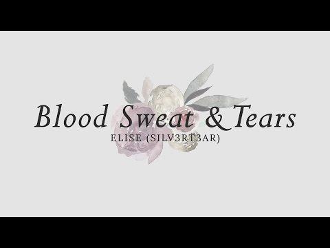 (Acoustic English Cover) BTS - Blood Sweat & Tears (피 땀 눈물) | Elise (Silv3rT3ar)
