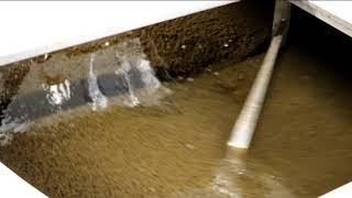 SQUEEZ R - Sludge dewatering - bio sludge