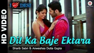 Dil Ka Baje Ektara - I Love Desi