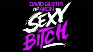 David Guetta Feat Akon   Sexy Bitch Official Extended Instrumental