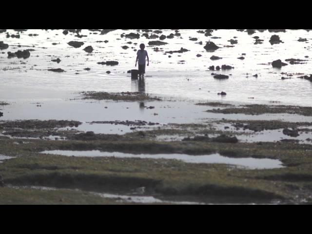 Tide Video