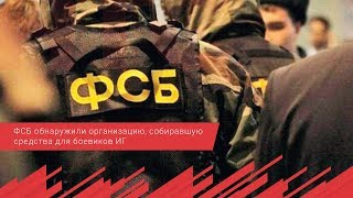 ФСБ обнаружили организацию, собиравшую средства для боевиков ИГ