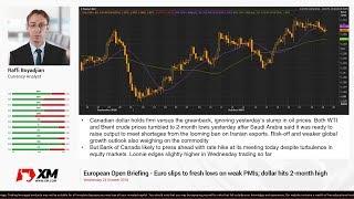 Forex News: 24/10/2018 - Euro slips to fresh lows on weak PMIs; dollar hits 2-month high