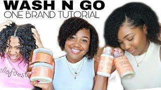 Wash N Go Tutorial | Short Natural Hair Routine | Shea Moisture Coconut Hibiscus
