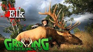 Bow Hunting Elk: The Big Herd Bull in a Last Chance New Mexico Elk Hunt(#411) @GrowingDeer.tv