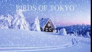 Boy by Birds of Tokyo Lyrics