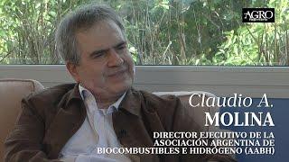 Claudio A. Molina - Director Ejecutivo de la AABH