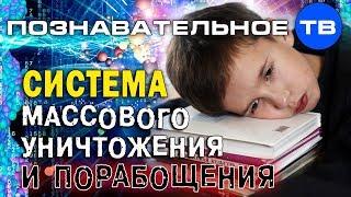 Система массового уничтожения и порабощения (Познавательное ТВ, Владимир Базарный)