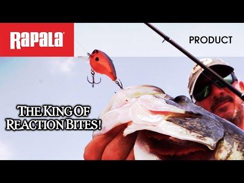 Rapala BX Brat 06 videó