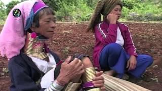 The Last Of The Padaung Long-necks