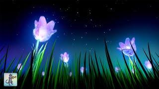 💤🌙 Deep Sleep Music 💤🌙 Meditation Music for Sleep, Study & Stress Relief