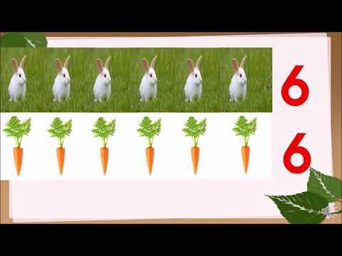 Đếm đến 6 - Nhận biết nhóm đối tượng trong phạm vi 6 - Nhận biết số 6