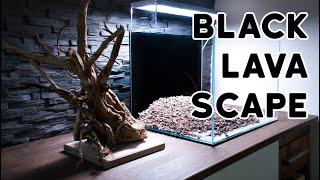 Aquascaping Black Lava Scape 55L #1 - Layout & Einrichtung