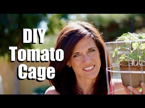 Making a DIY Tomato Cage – Sturdy, Easy and Cheap // $10 Garden Series #5, Season 2