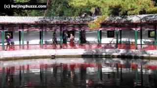 Video : China : Tranquil Heart Studio, XiangShan Park 香山公园, BeiJing