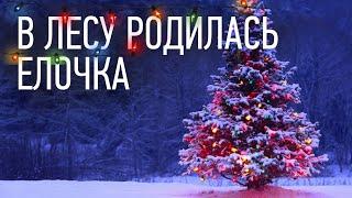 В лесу родилась елочка - детская Новогодняя песня