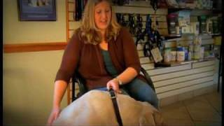Canines and Cranberries With Dr. Amy Howell