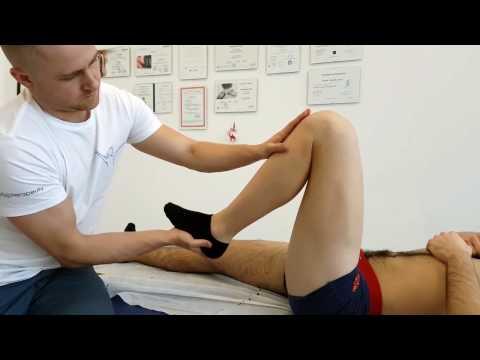 Mięśnie nóg powstałe w kolanie