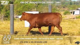 Coro 2360 b4 fiv