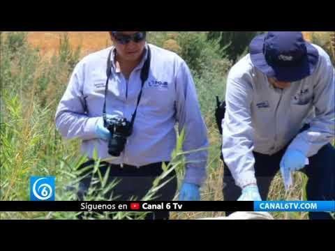 Terrible: Encuentran cadáver de niño en basurero de Culiacán