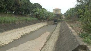 Tin Tức 24h Mới Nhất: Nguy cơ thiếu nước cho vụ đông xuân