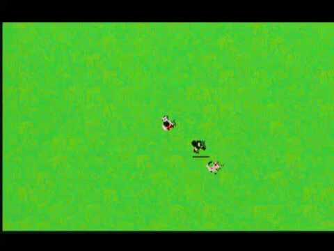 Video o boji