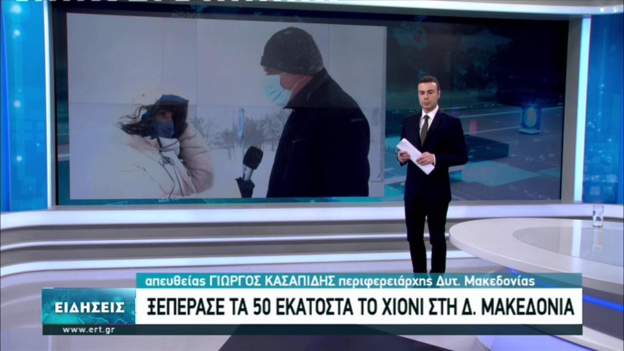 Γ. Κασαπίδης: Κλειστά τα σχολεία αύριο και στη δυτική Μακεδονία | 14/02/2021 | ΕΡΤ