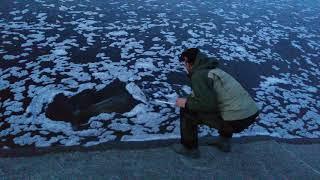 Рыбалка в добрянке пермский край форум