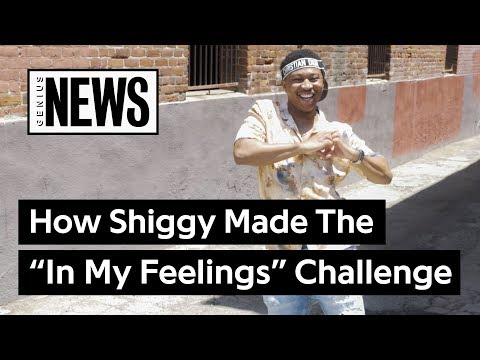 shiggy explains how he created the in my feelings challenge