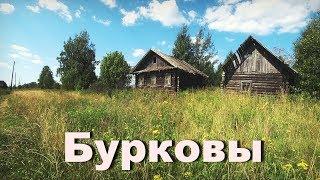 Рыболов календарь кировской области