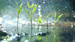 """Relaxing Piano Music with Tropical Rain Sounds for Sleep, Work or Meditation • """"Raindrops"""""""
