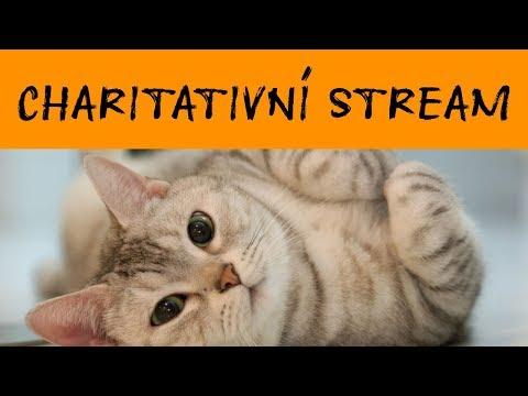POZVÁNKA NA CHARITATIVNÍ STREAM!