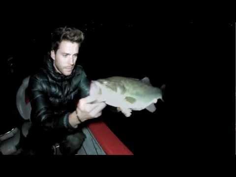 Battuta di pesca sportiva notturna
