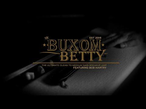 FRIEDMAN Buxom Betty Head Kytarový lampový zesilovač