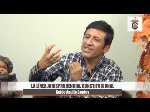 La Línea Jurisprudencial Constitucional - Tribuna Constitucional 45