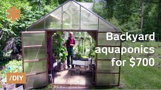 Backyard Aquaponics: DIY System To Farm Fish With Vegetables