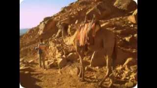 Egypt - Moses Mount (Египет - Гора Моисея)