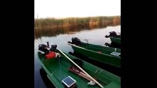 Рыбалка на дунае в болгарии или румынии