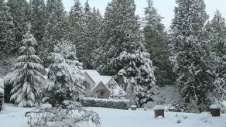 2008 Winter Wonderland