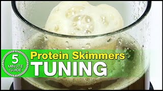 The best way to tune your Protein Skimmer: Learn how in just 5-minutes!